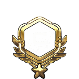 Overwatch Portrait Rahmen Level 1361-1370